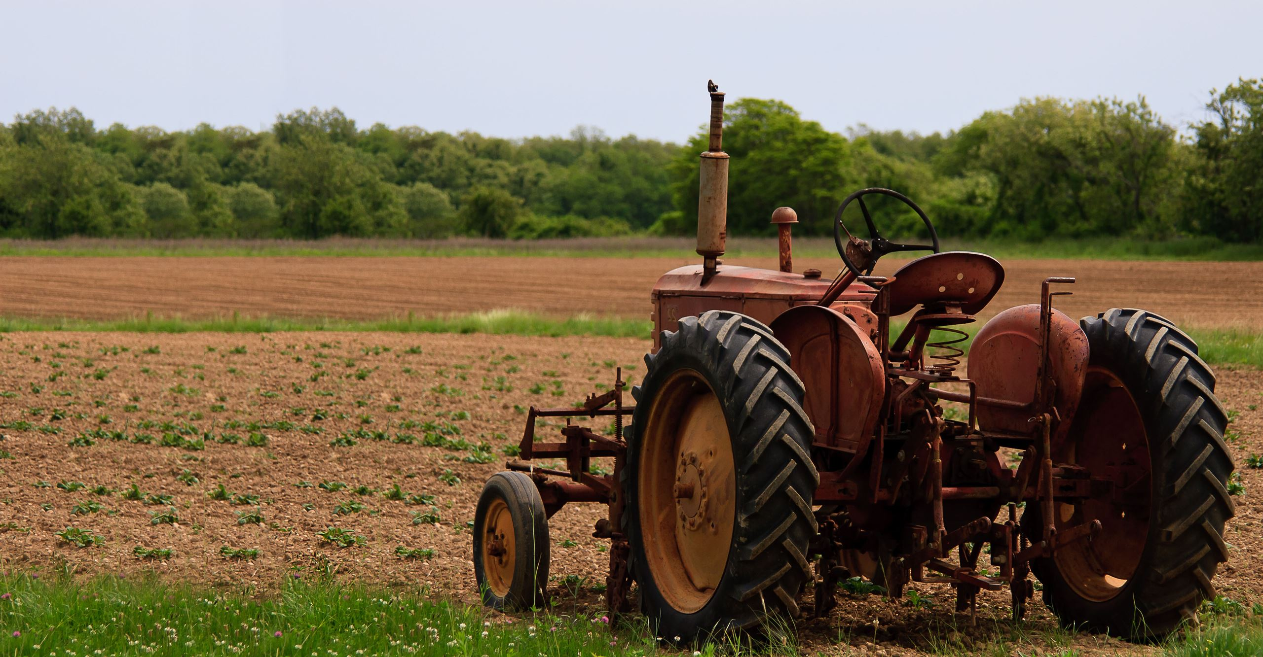 Rustic tractor in field